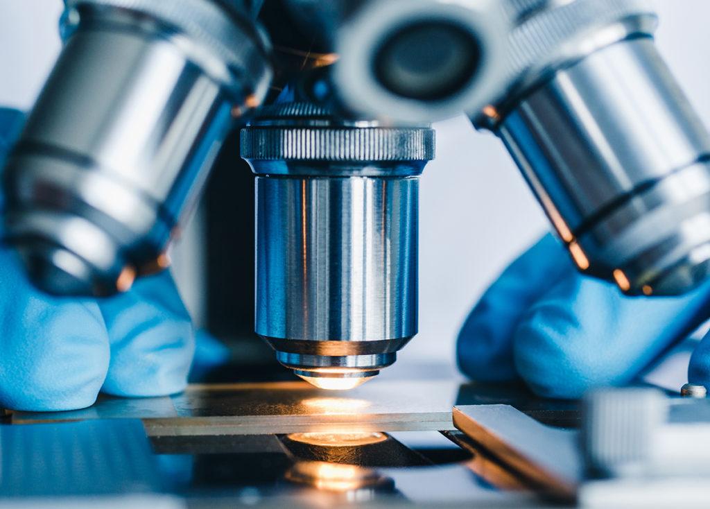 transplantation research